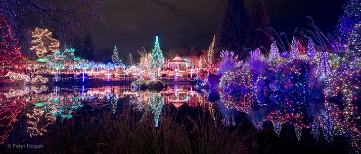 VanDusen Botanical Garden Winter Lights
